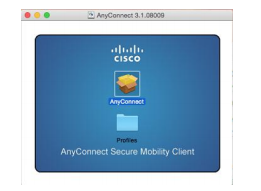 Cisco AnyConnect Client icon